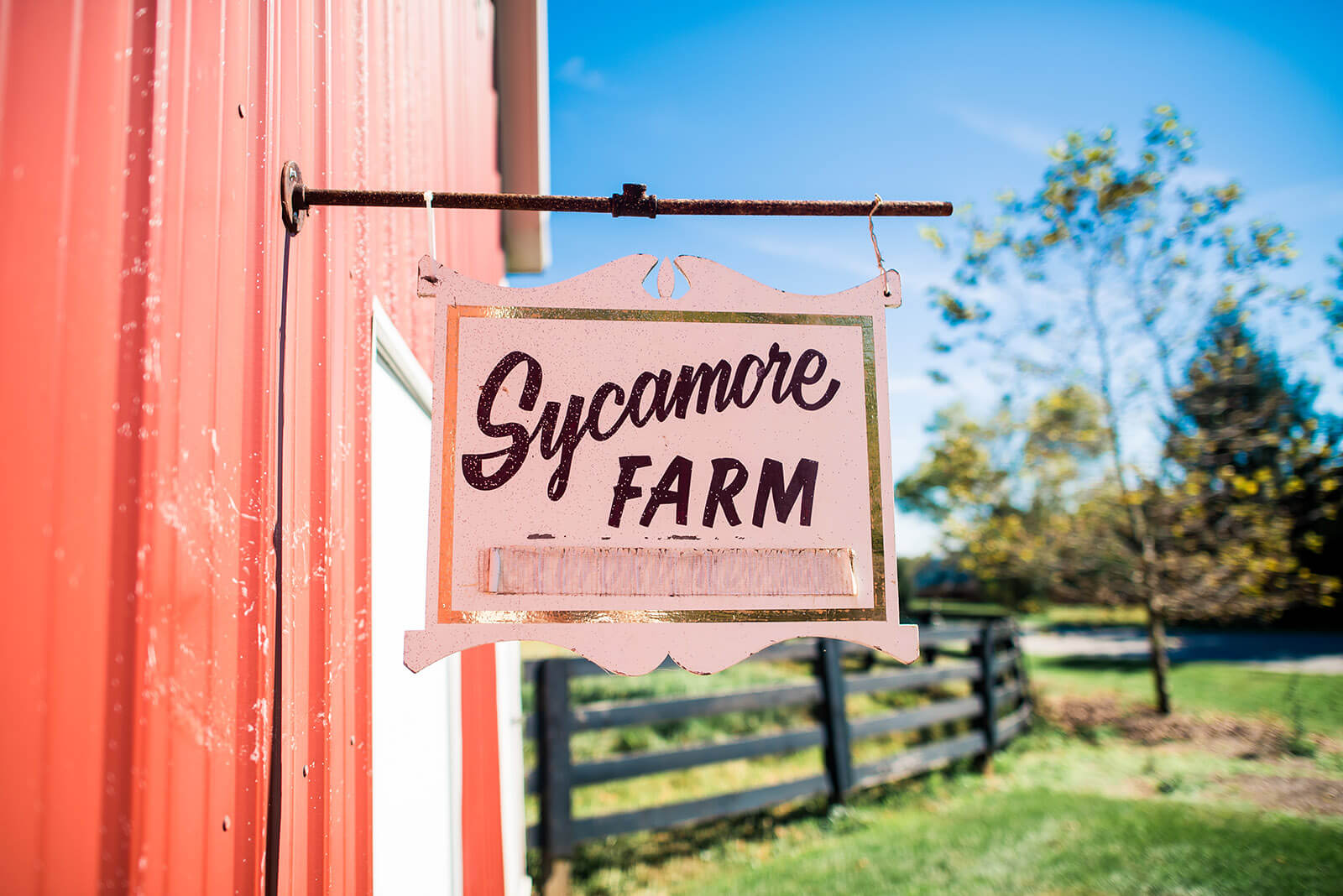 About Sycamore Farm